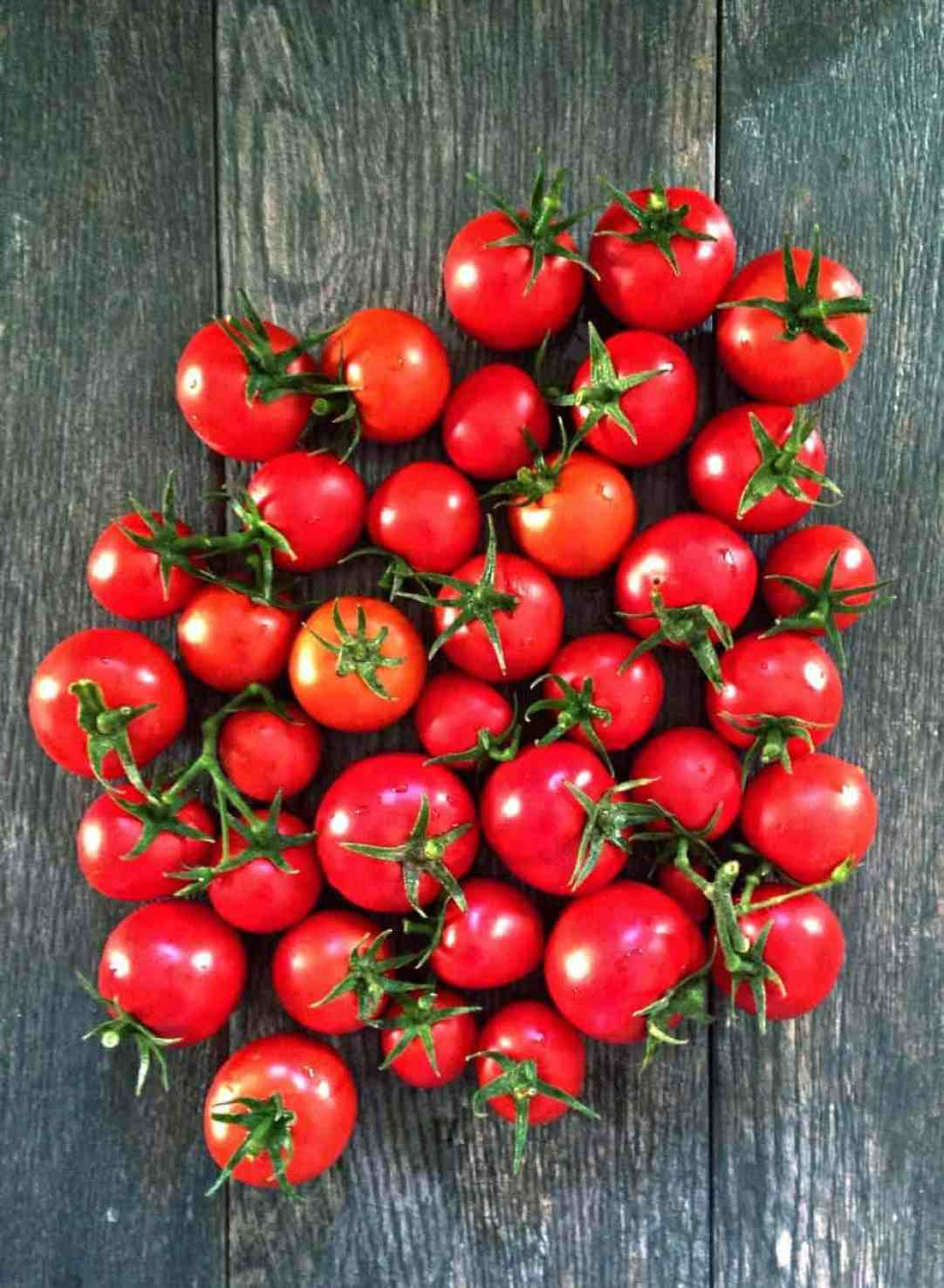Growing My Own Tomatoes - A Fresh Journey