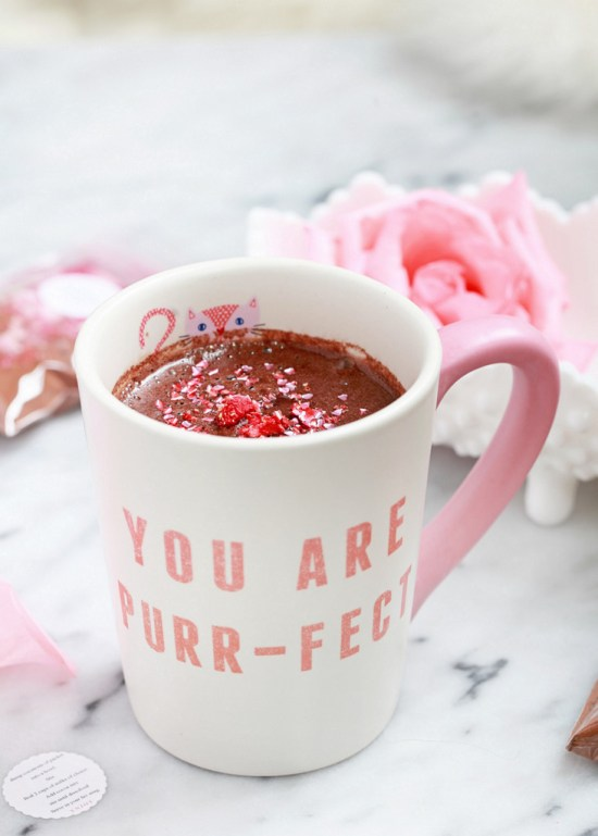 DIY Hot Cocoa Mix | Posh Little Designs