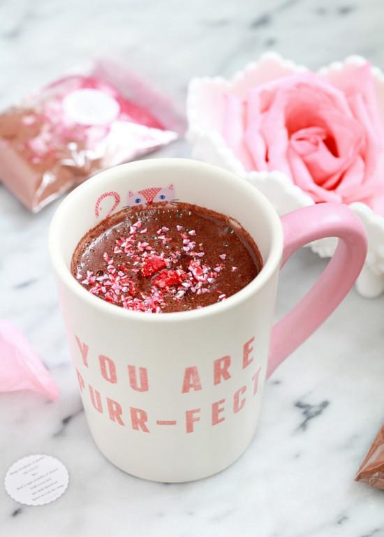 DIY Hot Cocoa Mix | Posh Little Designs