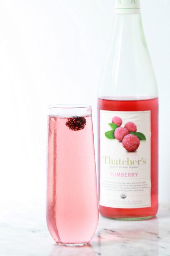 Yumberry Mimosa |Posh Little Designs