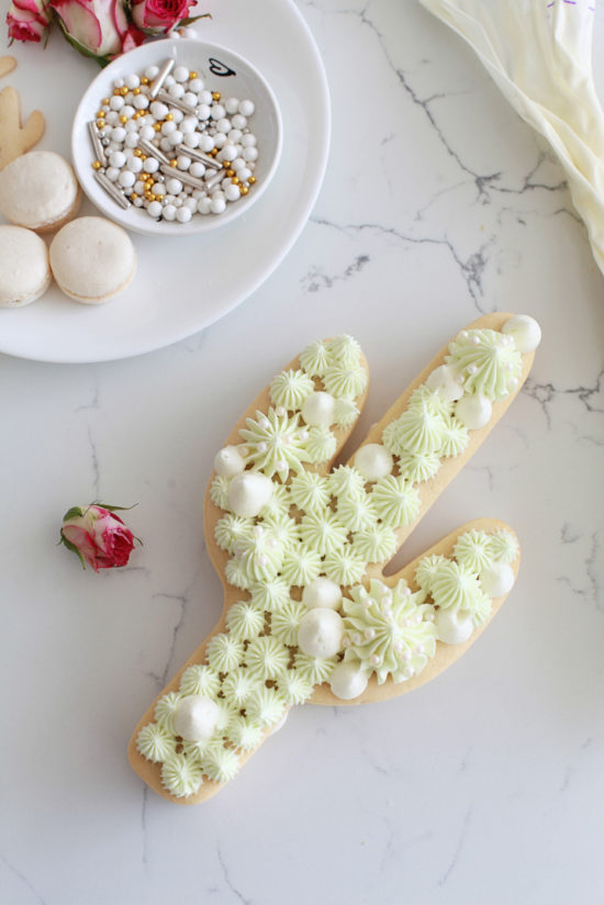 cactus-cookie cake-trends-cookie cutter-dessert
