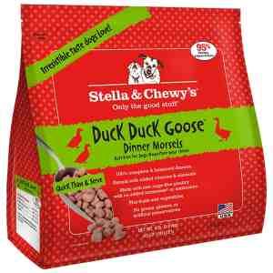 S&C Duck Duck Goose Frozen 4#