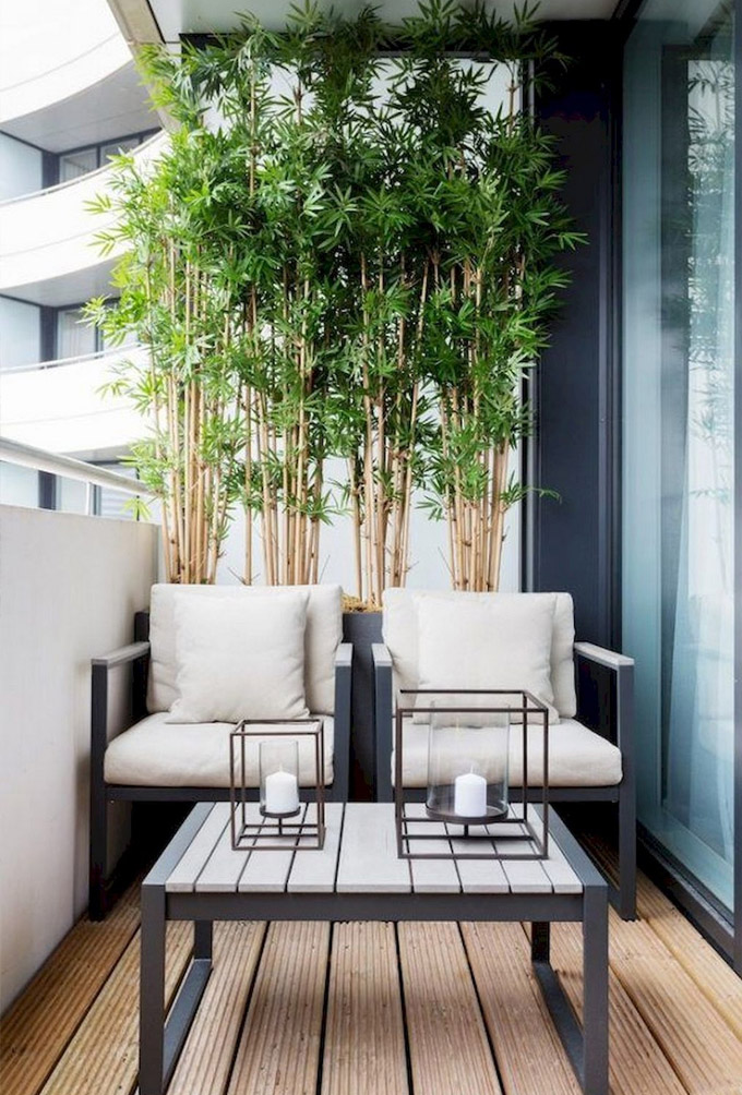Small Balcony Ideas To Help You Make, Tall Potted Plants For Patio Privacy