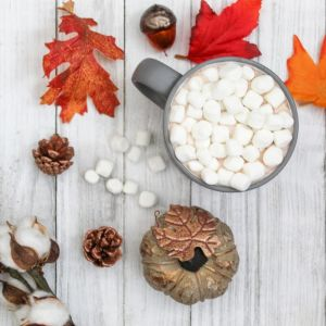 Fall, Hot Chocolate with Marshmallows, Pumpkin, Fall Leaves, Fall Floral