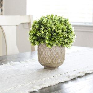 Lifestyle, Farmhouse, Dining Table, Plant