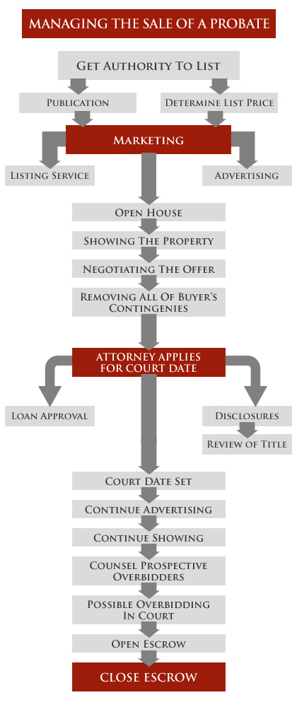The probate real estate sale process explained position realty appointment of the administrator or executor of the estate solutioingenieria