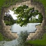 Donde la vida levanta muros la inteligencia emocional abre una salida
