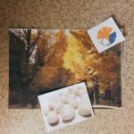 「秋の味覚」の掘り出し物を検証