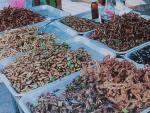 「昆虫食」挑戦する勇気ある?