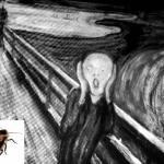 ゴキブリだけではない、夏の害虫を駆除する為のルールとは?