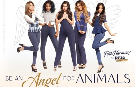 Fifth Harmony Encourages You to be An Angel for Animals