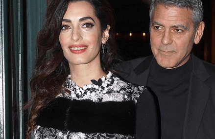 George and Amal Clooney help save nine dogs! Check it out!
