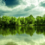 Lake with trees