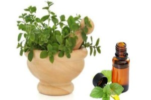 Oregano – The Flu Shot of the Future