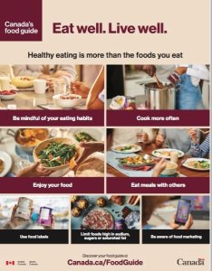 canada food guide 2019 back page