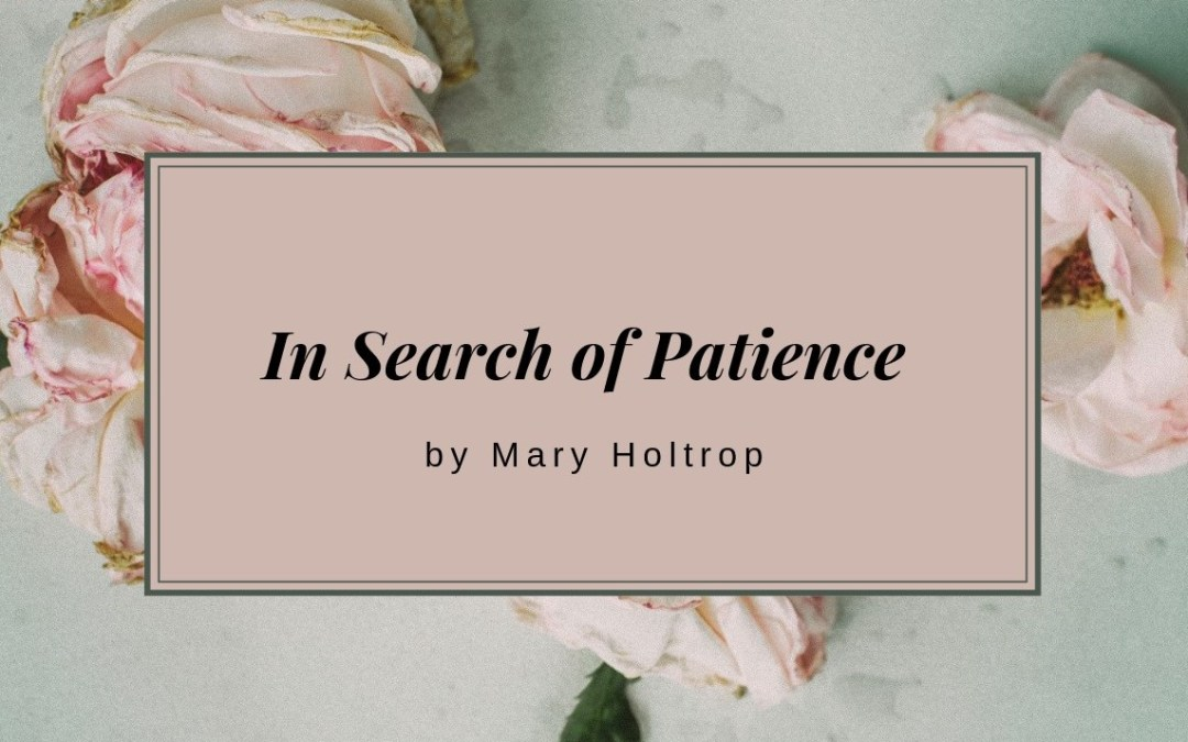 In Search Of Patience