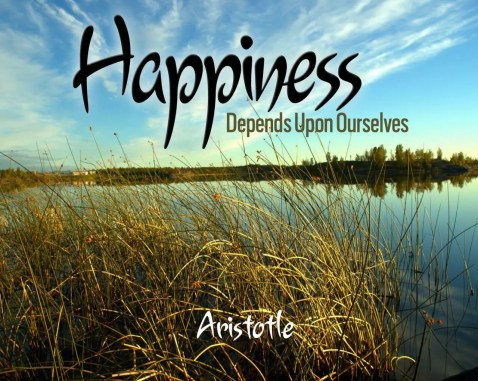 Happiness is an emotional state characterized by feelings of joy, satisfaction, contentment, and fulfillment.