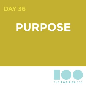 Day 36 : Purpose | Positive 100 | Chronic Positivity Project