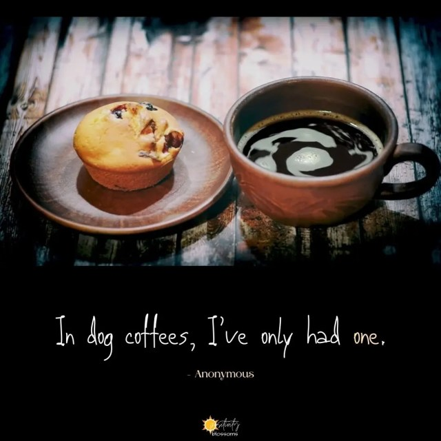 Funny coffee quote. In dog coffees, I've only had one. Top 20 List of Coffee Quotes Featured Image