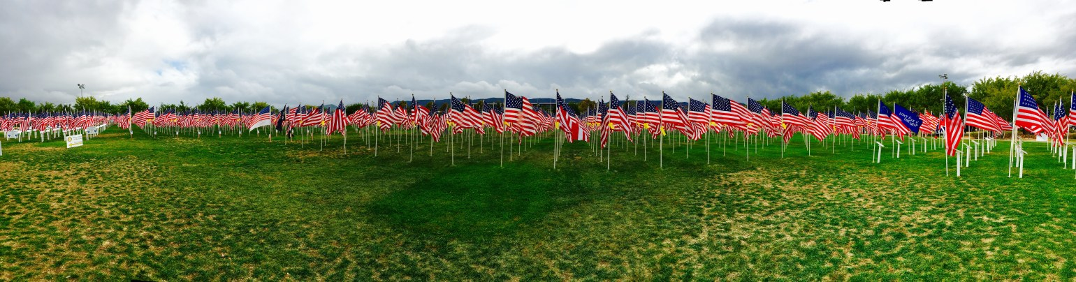 Field of Flags - 1