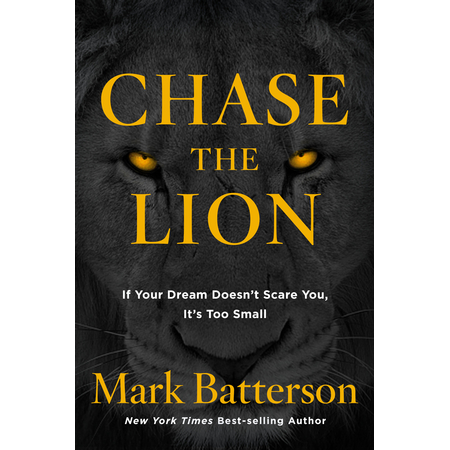 chase-the-lion