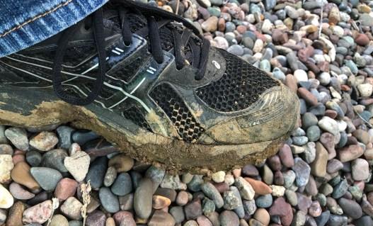 Muddy Shoe - 1.jpg