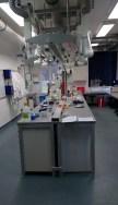 Gläsernes Labor - für sinnvolle Geburtstagsveranstaltung