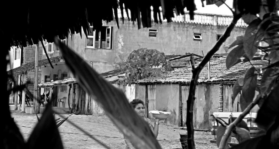 editorial, brasil