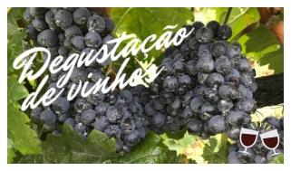 uvas na Itália