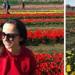 parque de tulipas em Roma