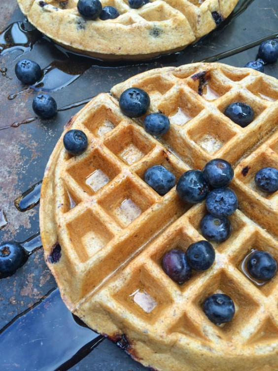Blueberry Greek Yogurt Waffles