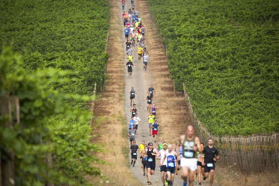 Races That Involve Booze - Fine Wine Half Marathon