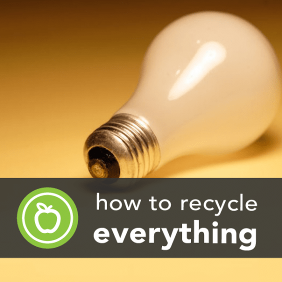 How to Recycle Anything (the Sustainable Way)