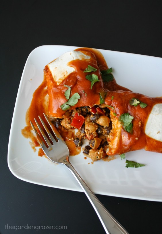 4. Protein Monster Vegan Enchiladas
