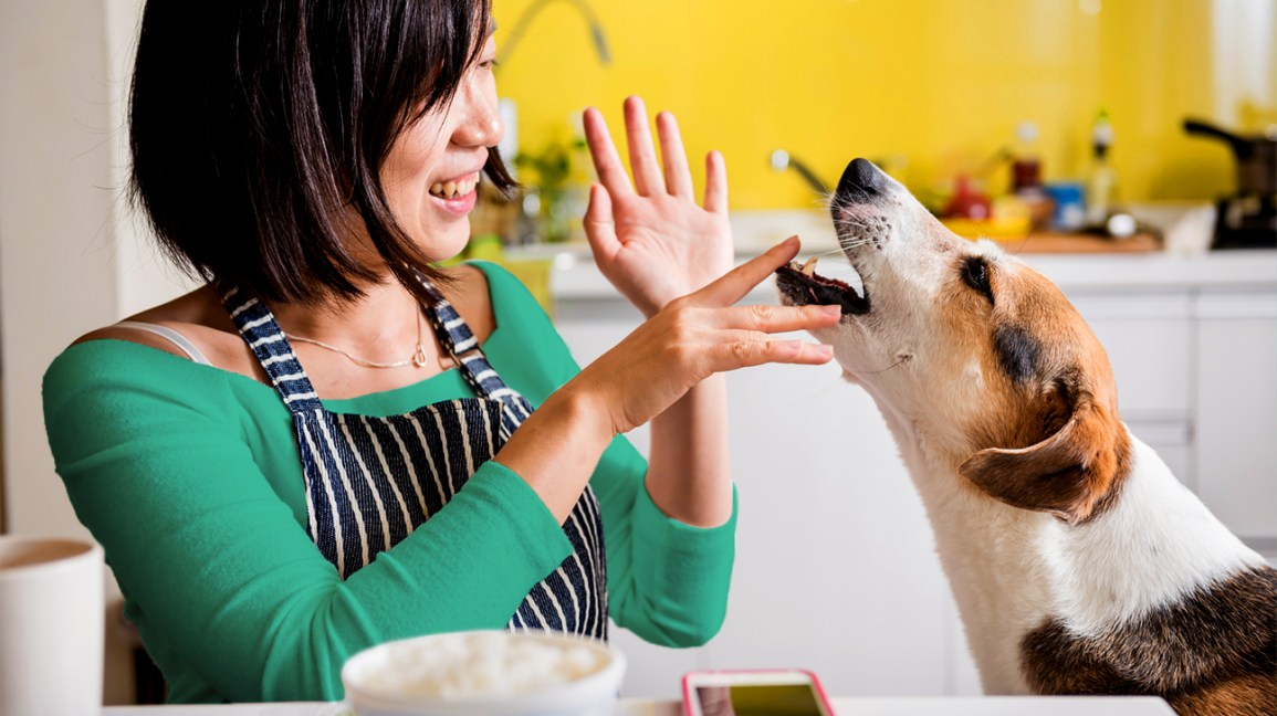 woman playing with her dog in the kitchen