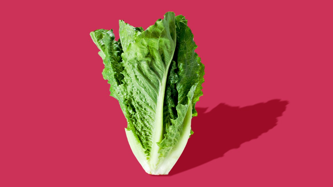 romaine lettuce on a pink background