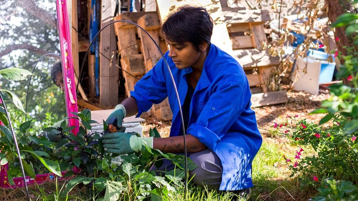 Gardening 101: A Beginner's Guide To Gardening