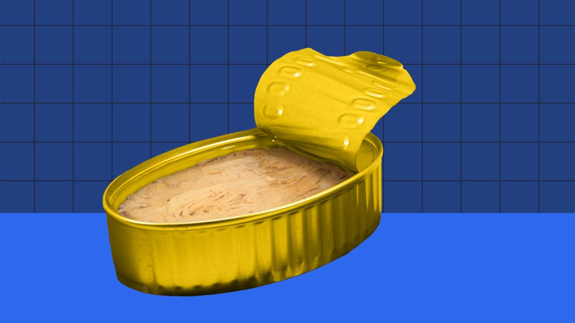 canned tuna on a blue background header