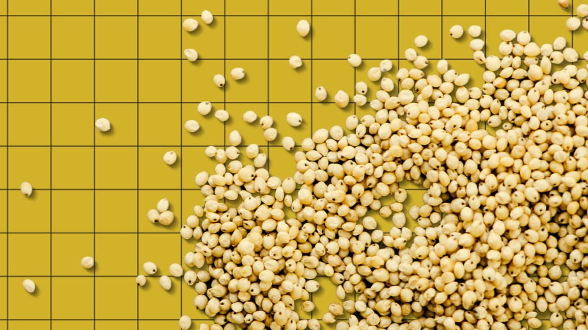 scattered healthy rare grains on a yellow background header
