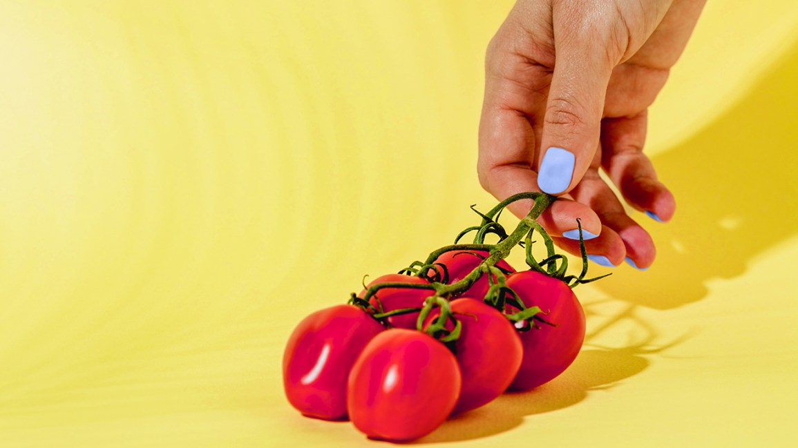 hand admiring low-carb tomatoes header