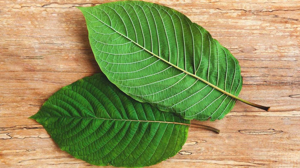 What is the most sedating kratom