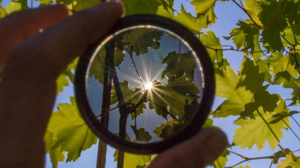 1669e4d005f Why Polarized Lenses  Uses