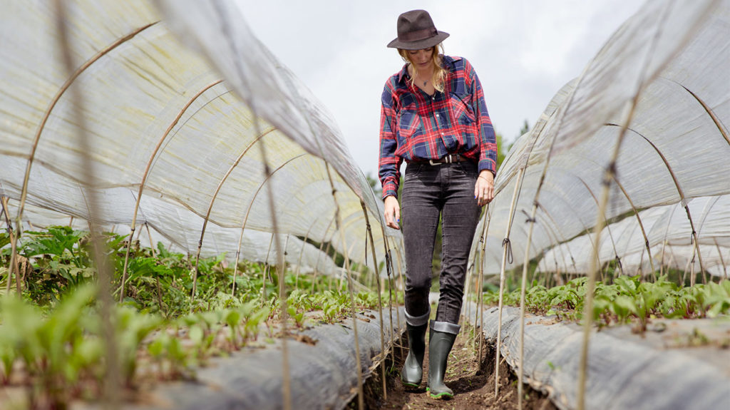 Kale Near Top of 'Dirty Dozen' Produce List