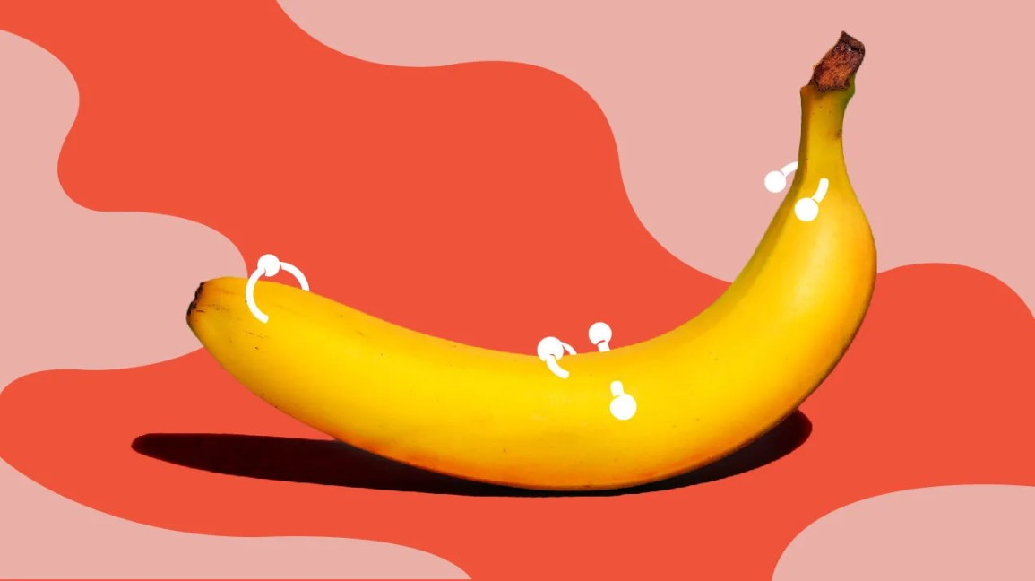 Everything You Should Know Before Getting a Penis Piercing