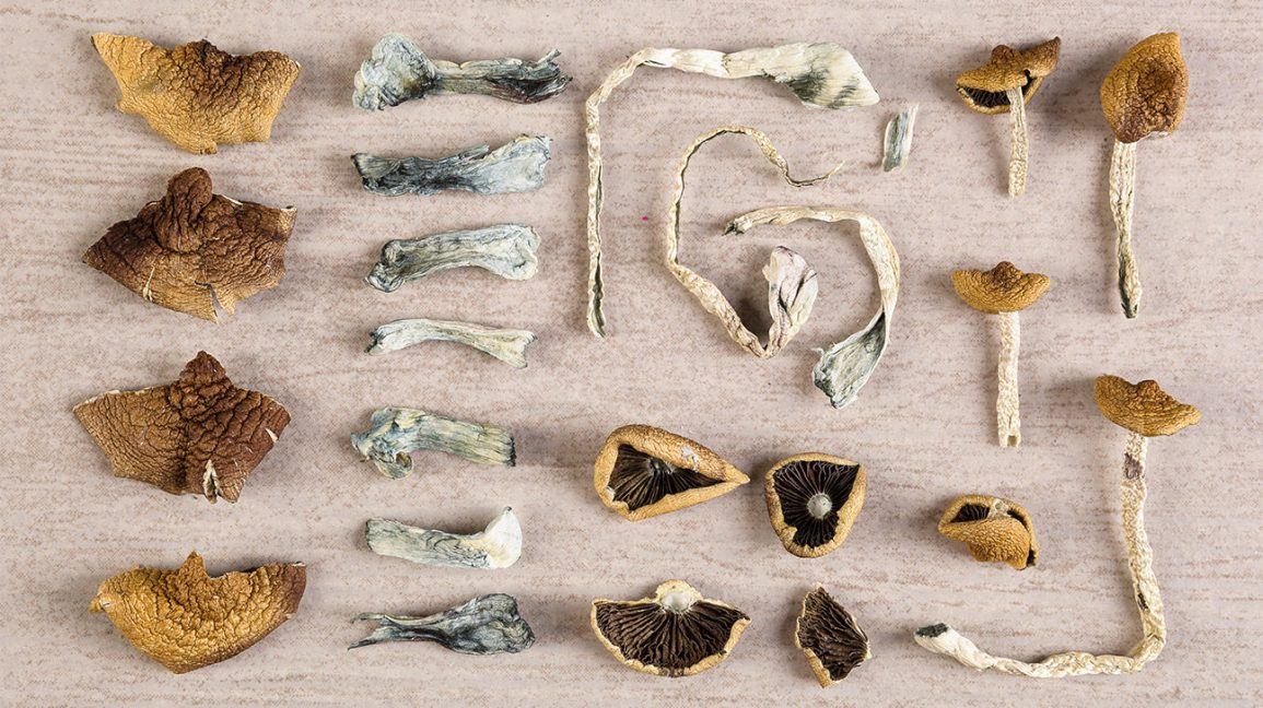 Could Magic Mushrooms Ever Replace Today's Antidepressants?
