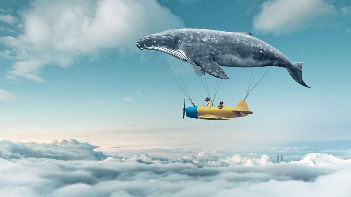 Whale_Airplane_Clouds_1296x728-header-1296x728.jpg?w=1155&h=1528