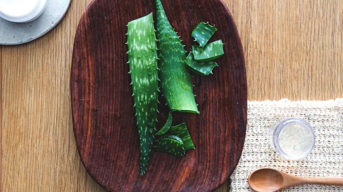 Is Aloe Vera an Effective Treatment for Diabetes?