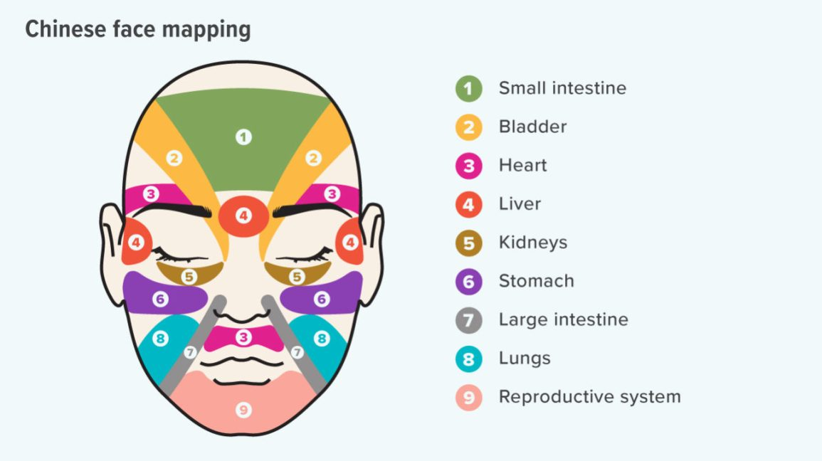 Face Mapping Can You Use It To Improve Your Skin S Health