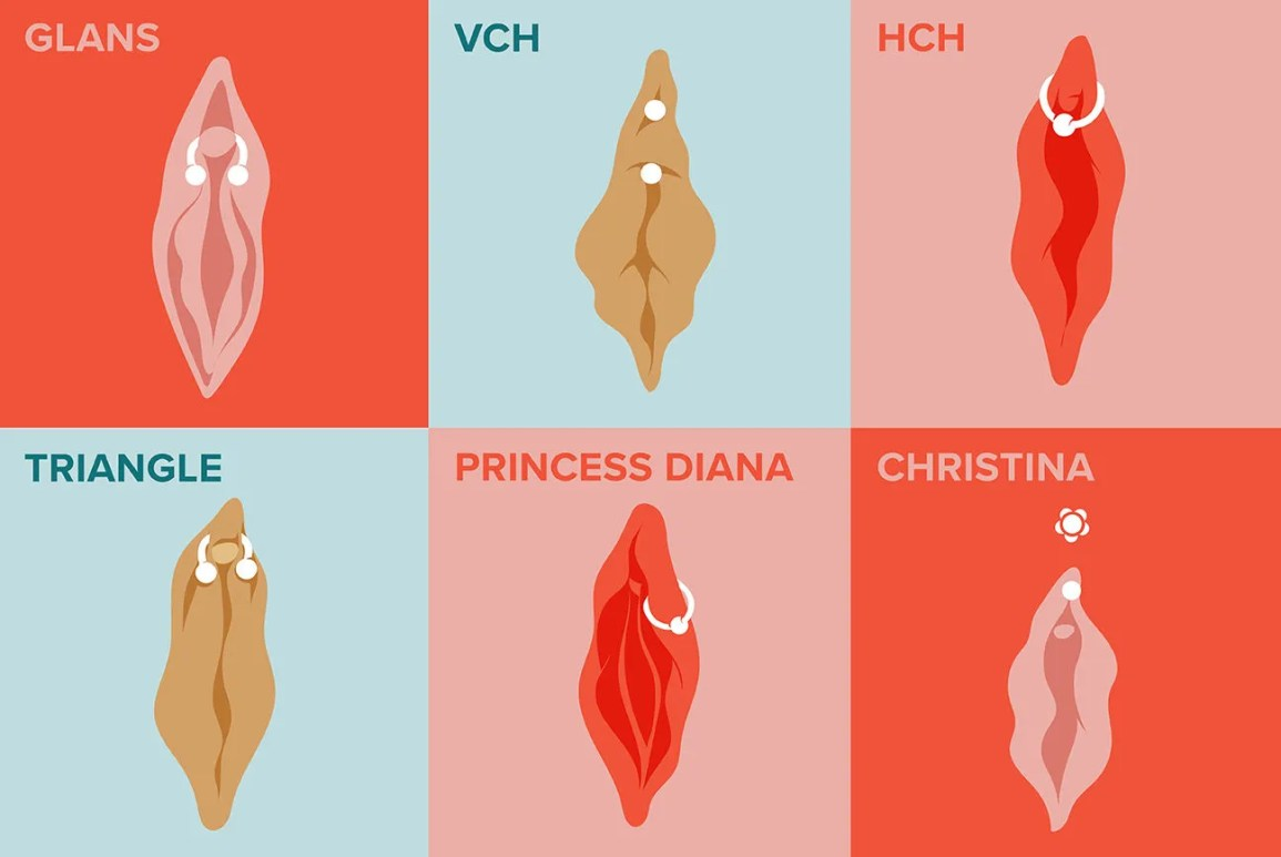 Illustration showcasing different types of clitoral glans, clitoral hood, and mons pubis piercings. Piercings from top left: clitoral glans, VCH, HCH, triangle, Princess Diana, Christina.