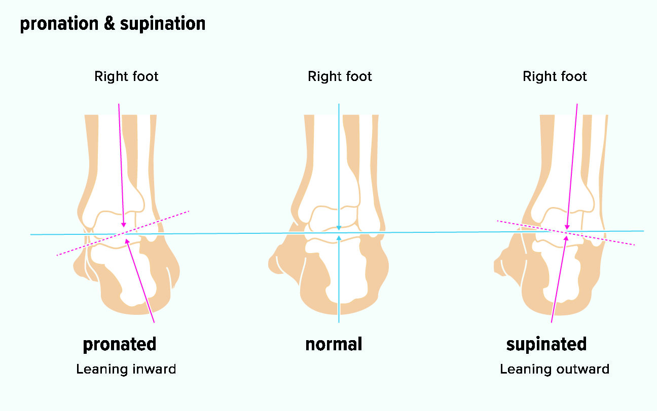 Supination and Pronation: What It Means